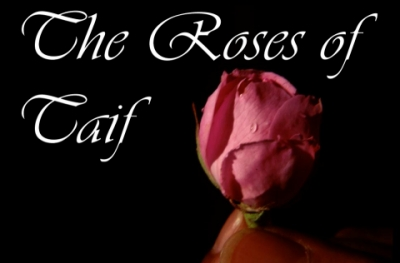 The Roses of Taif